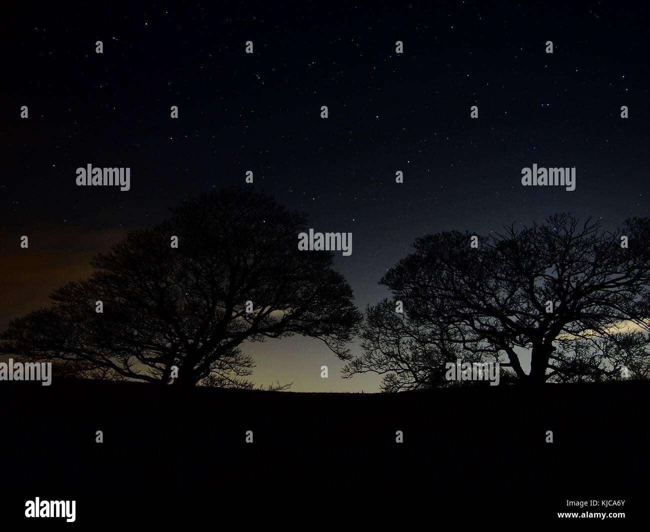 A view of bare tree on a starry autumn night at Curbar Edge, Peak District, England - Stock Image