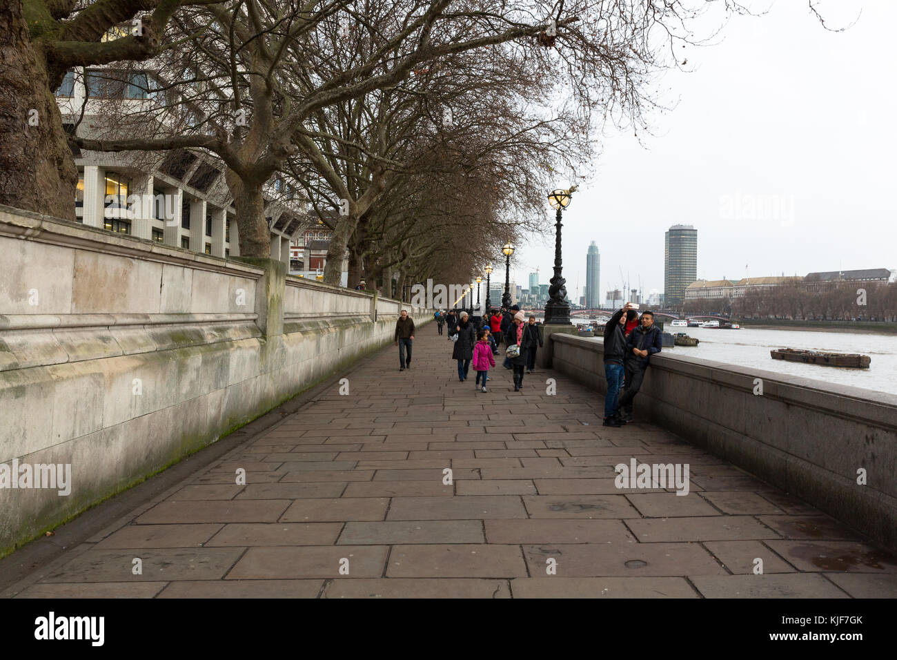 Tree-lined pathway alongside the River Thames - London, UK - Stock Image