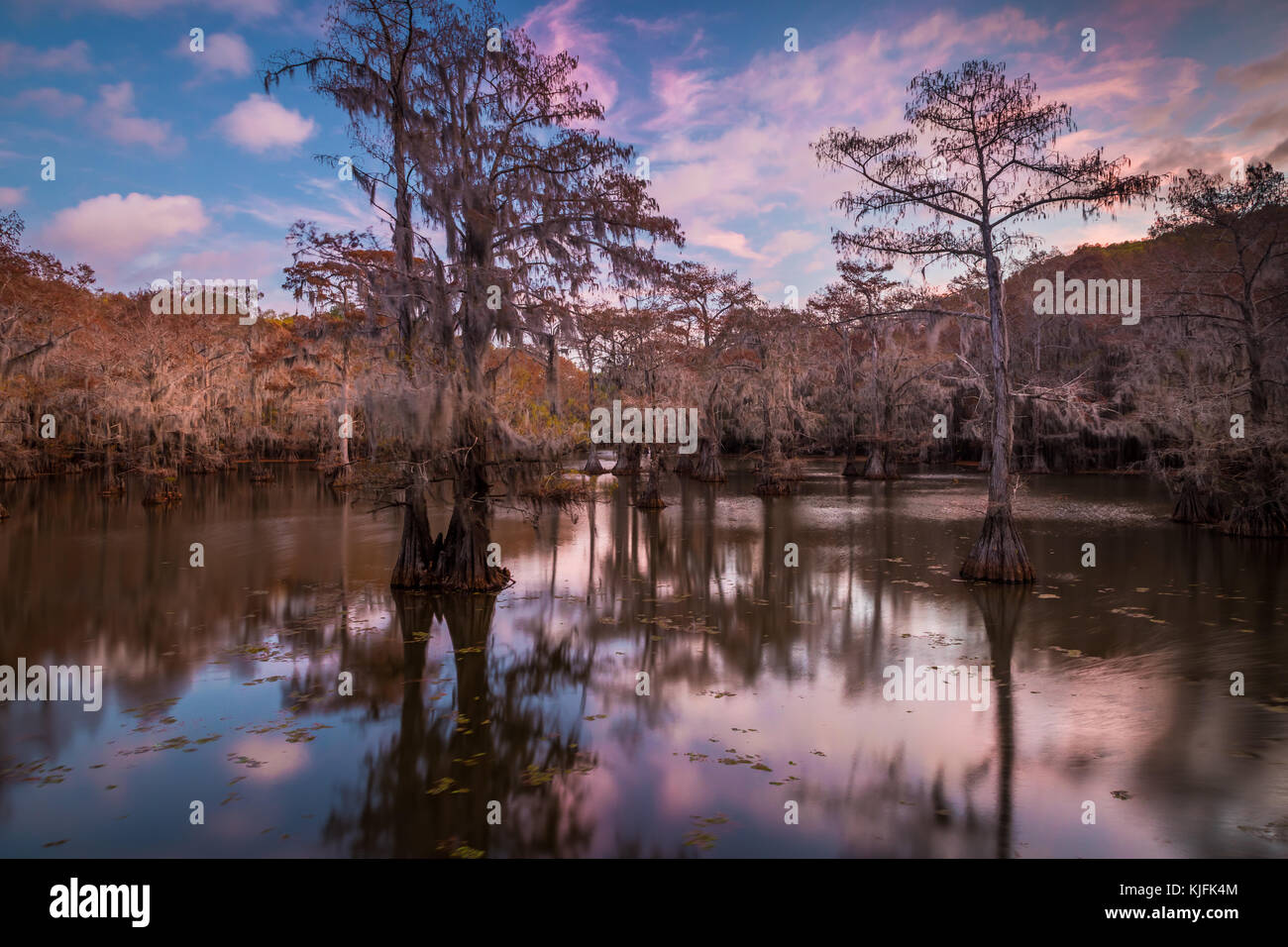 Caddo Lake is a lake and wetland located on the border between Texas and Louisiana. - Stock Image