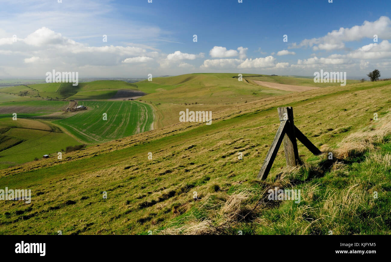 Tan Hill (centre of image - 294m), seen from the side of Milk Hill (295m), the two highest hills in Wiltshire. Stock Photo