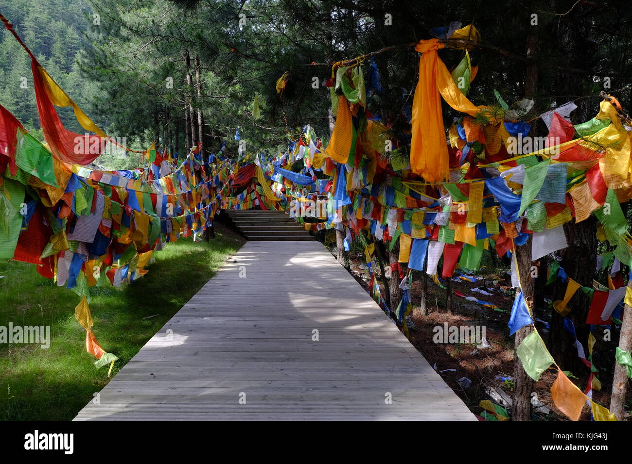Praying flags and walking path at Jiuzhaigou valley - Stock Image