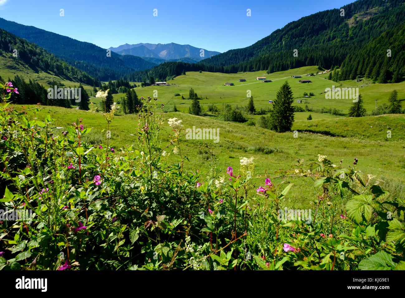 Valeppalmboden mit der Albert Link Hütte, Spitzingseegebiet, Oberbayern Bayern Deutschland - Stock Image