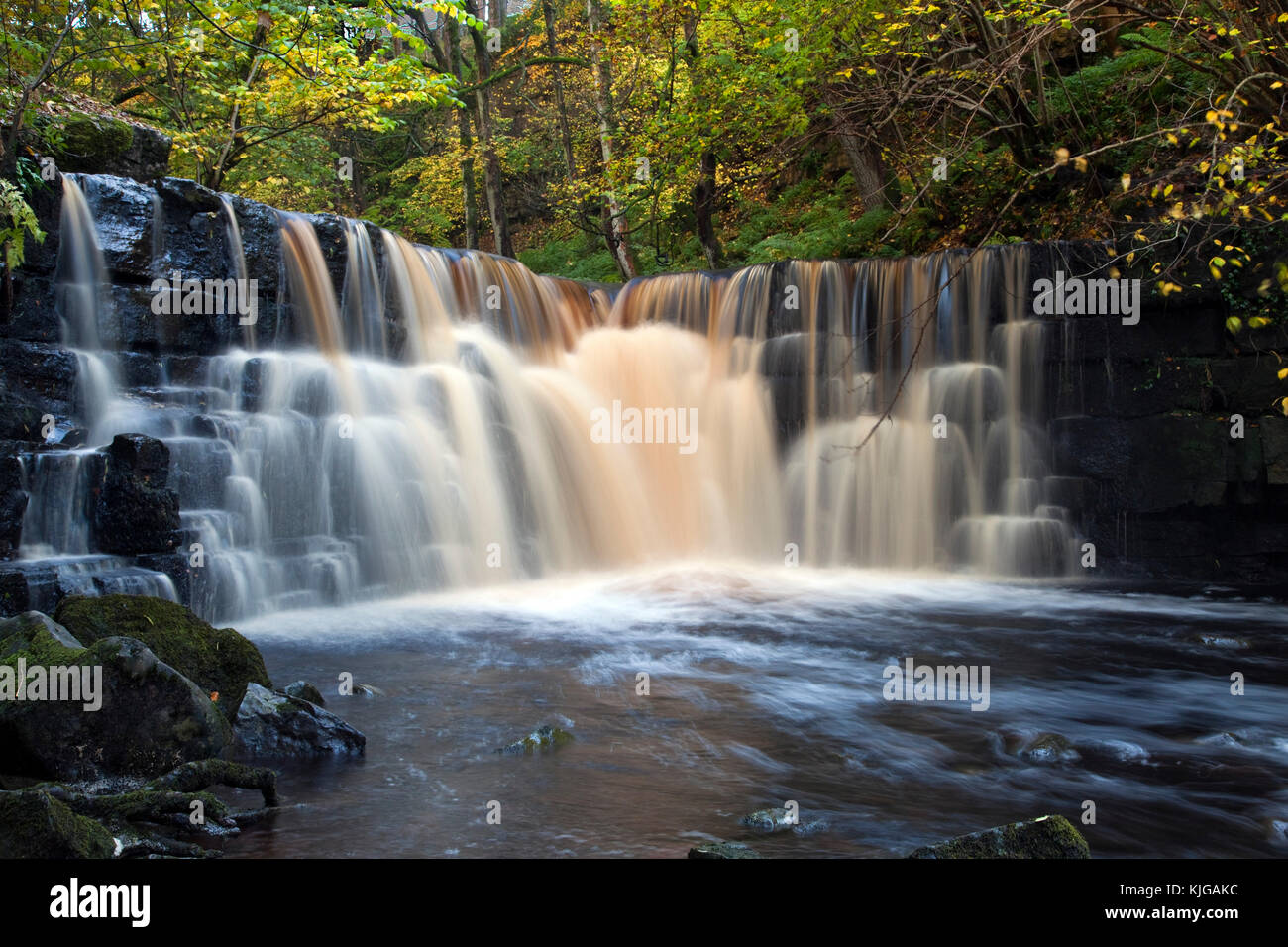 Waterfall on Whitfield Gill near Helm Wensleydale Yorkshire Dales national park North Yorkshire - Stock Image