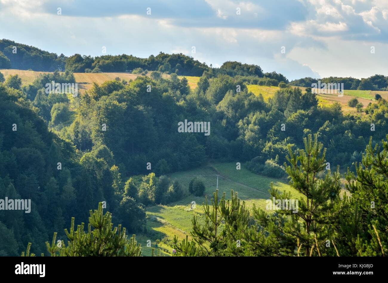Natural green summer landscape. Beautiful Jurassic valley in Poland. - Stock Image