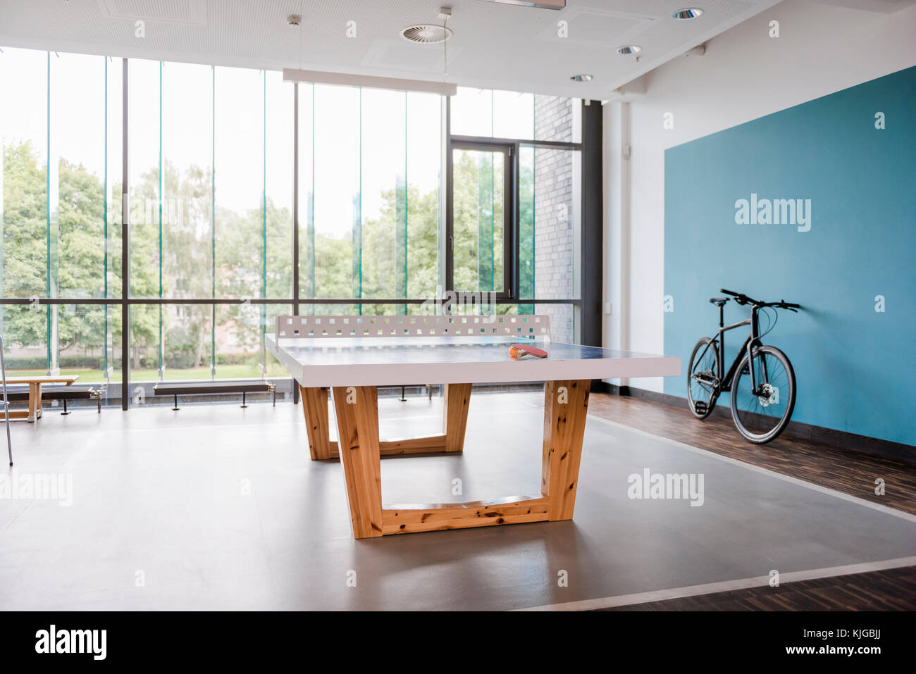Awesome Table Tennis Table And Bicycle In Break Room Of Modern Home Interior And Landscaping Dextoversignezvosmurscom