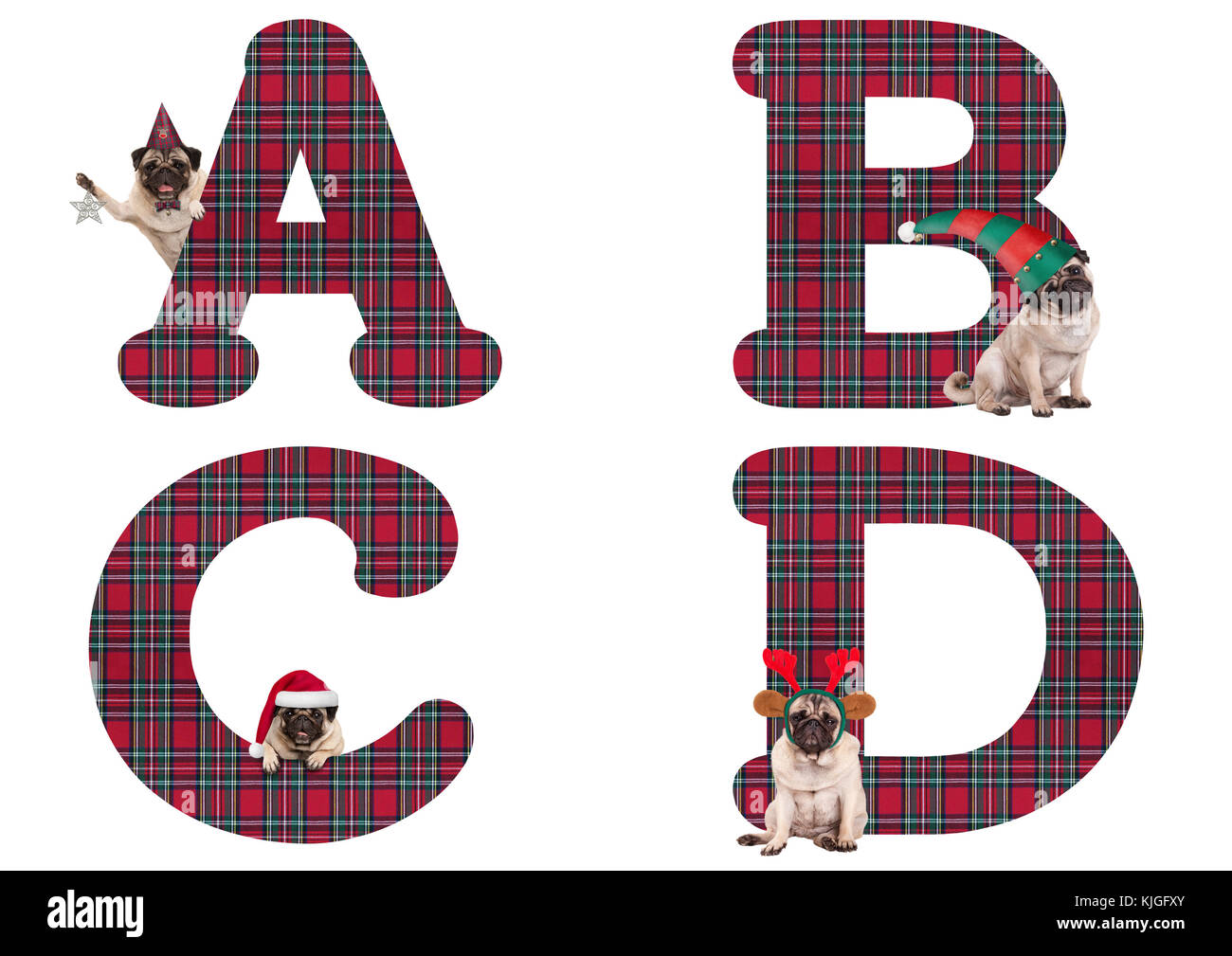cute Christmas pug puppy dog alphabet letters  A B C D, isolated on white background - Stock Image