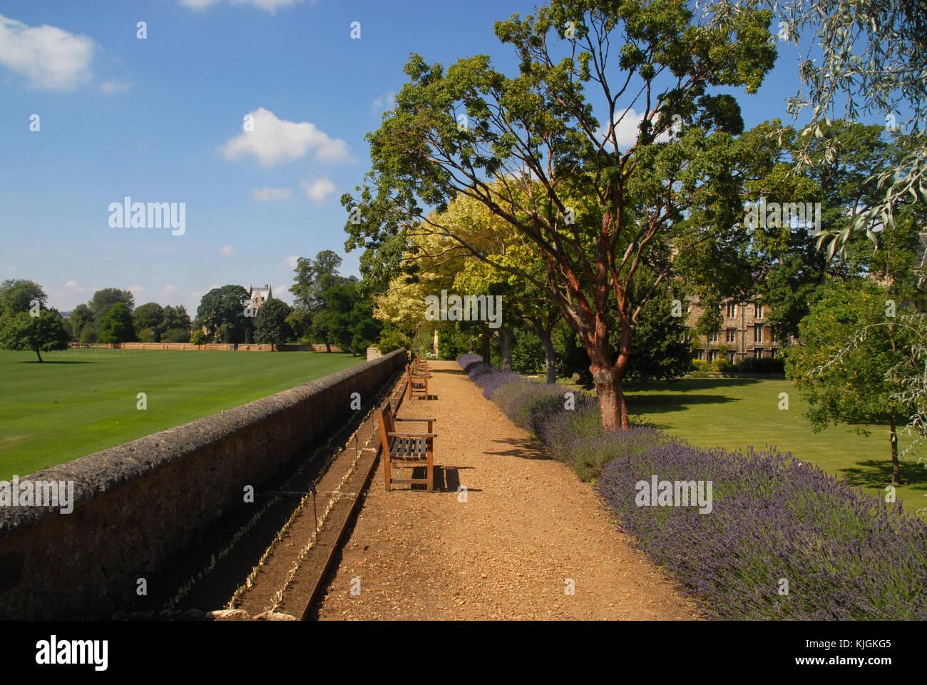 Wall between Fellows Garden of Merton College and Merton Field, Oxford - Stock Image