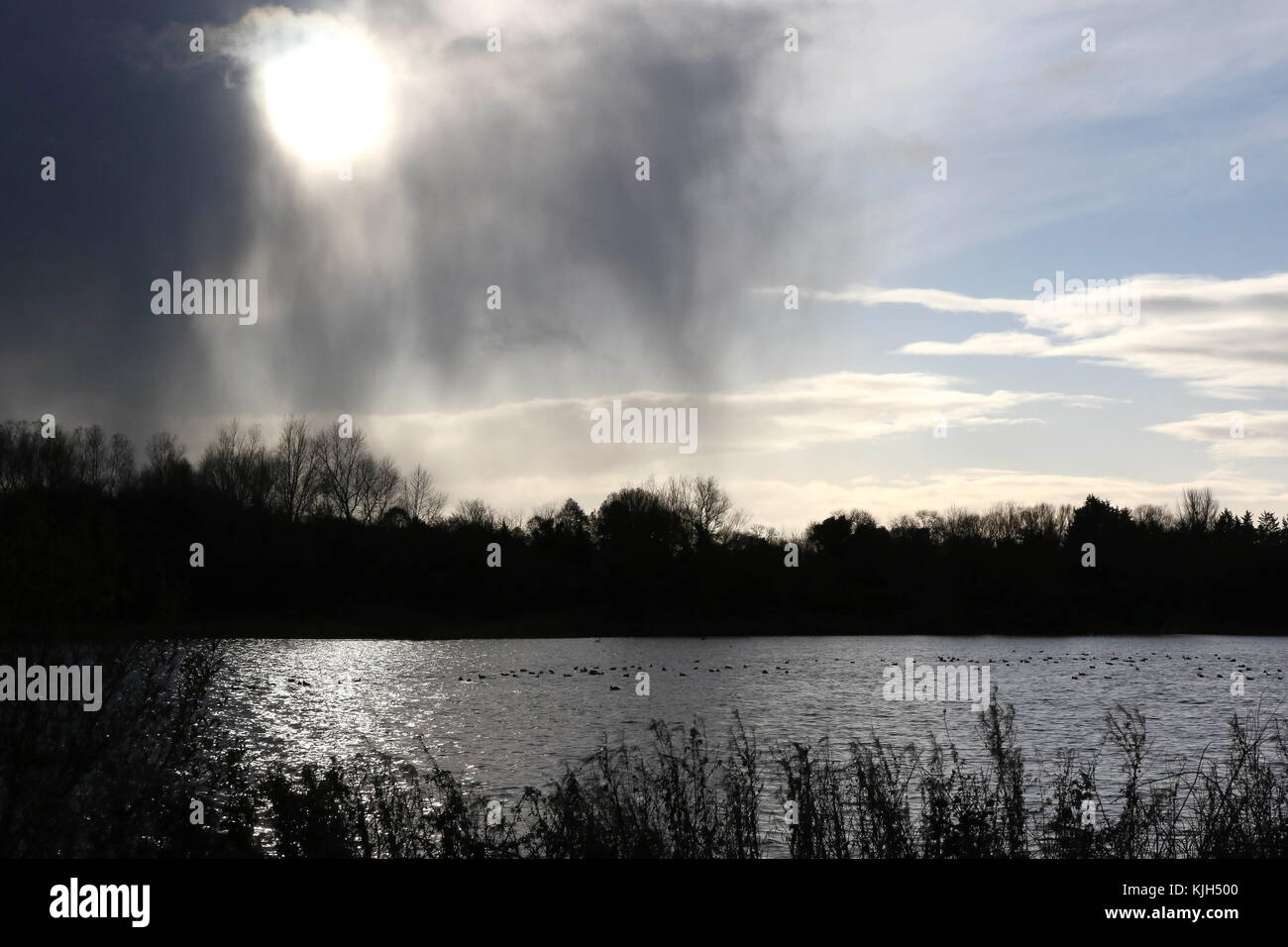 Lough Neagh Northern Ireland UK. 24 November 2017. UK weather - heavy overnight frost gave way to cold winds and - Stock Image