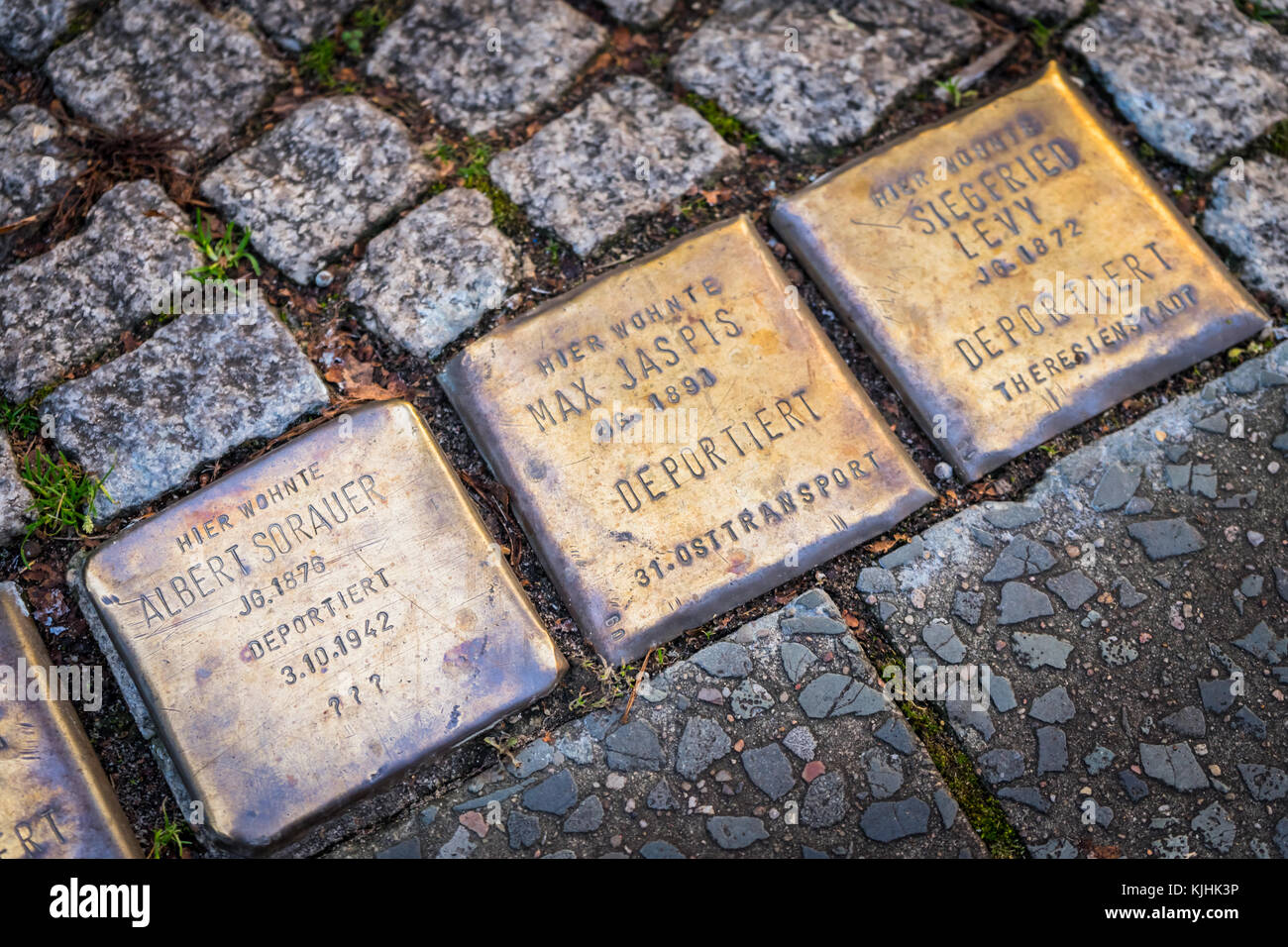 Stolpersteine (memorial stones) in a street in Berlin to commemorate the victims of the Nazi extermination camps - Stock Image