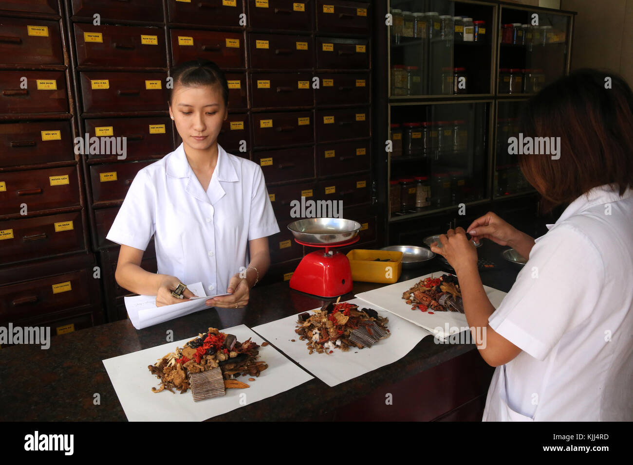 Traditional Chinese medicine pharmacy.  Herbal medicine therapy.  Vietnam. - Stock Image