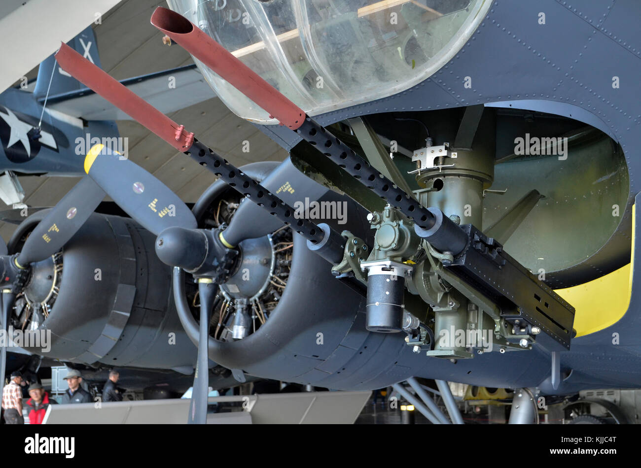 Front .50 calibre 12.7mm machine guns, B-17G Flying Fortress, American Air Museum, Duxford, UK. The machine guns - Stock Image
