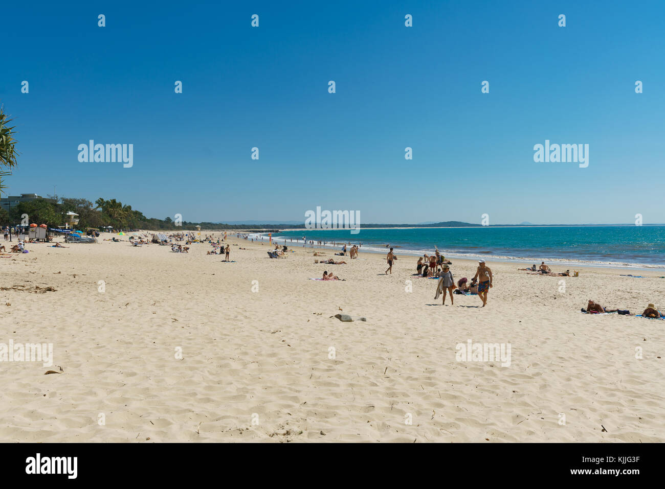 Noosa Head, Australia, Travel Lifestyle, Beaches, Birds, Flowers, blue sky - Stock Image