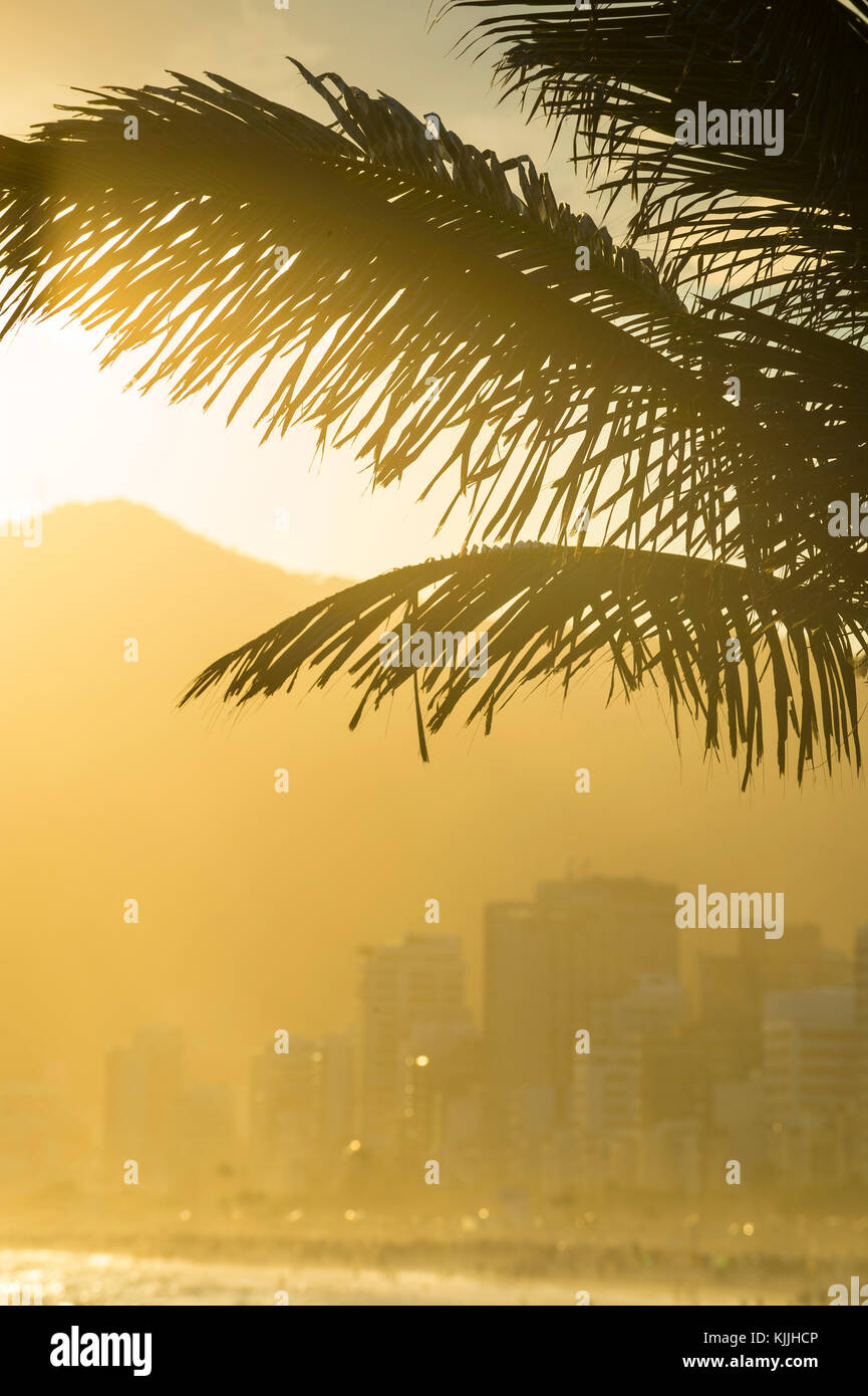 Golden sunset lights up the silhouette of palm fronds against the outline of  Ipanema buildings and mountains in - Stock Image