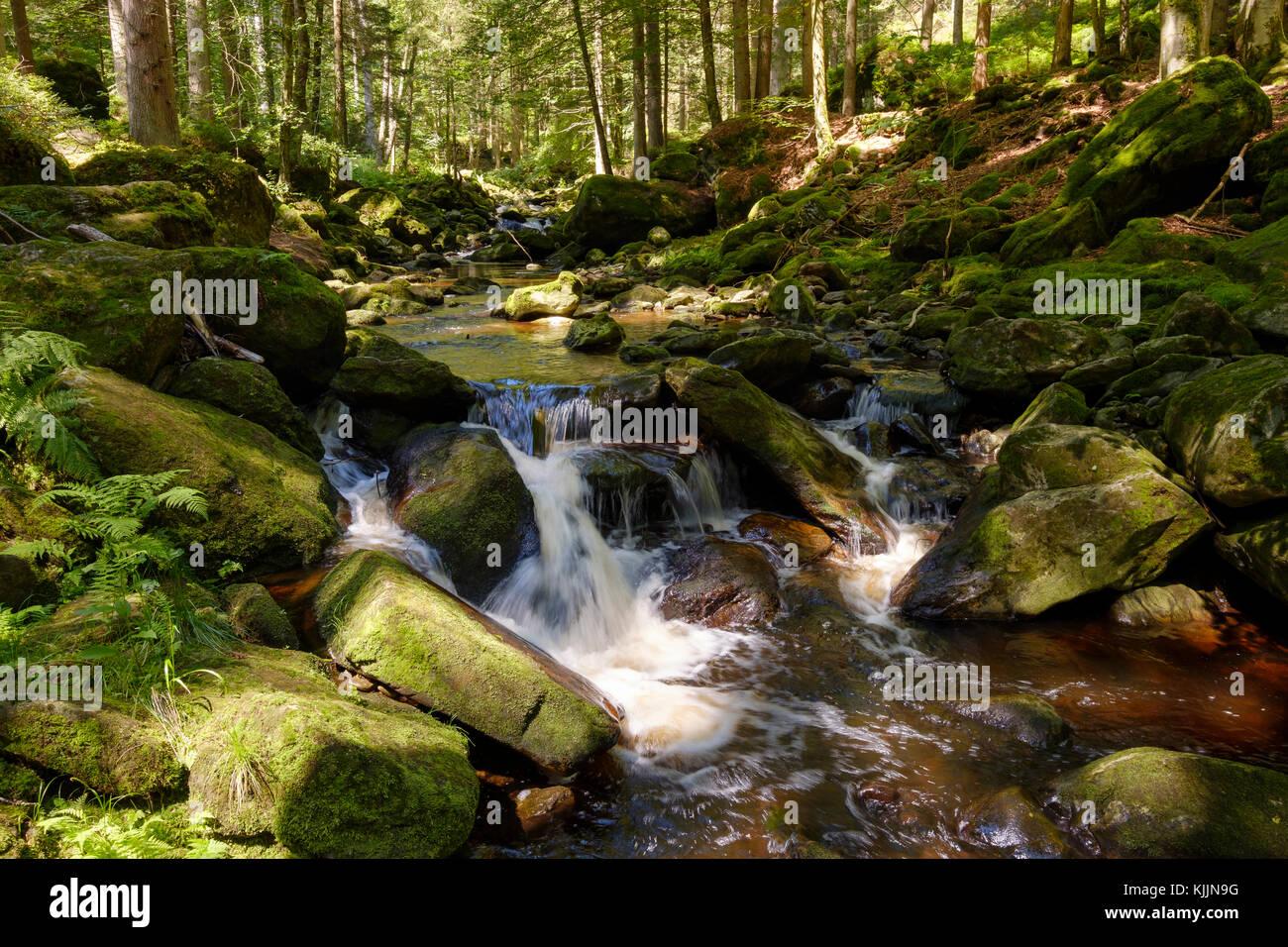 Steinklamm, Große Ohe, Spiegelau, Bayerischer Wald, Niederbayern, Bayern, Deutschland Stock Photo