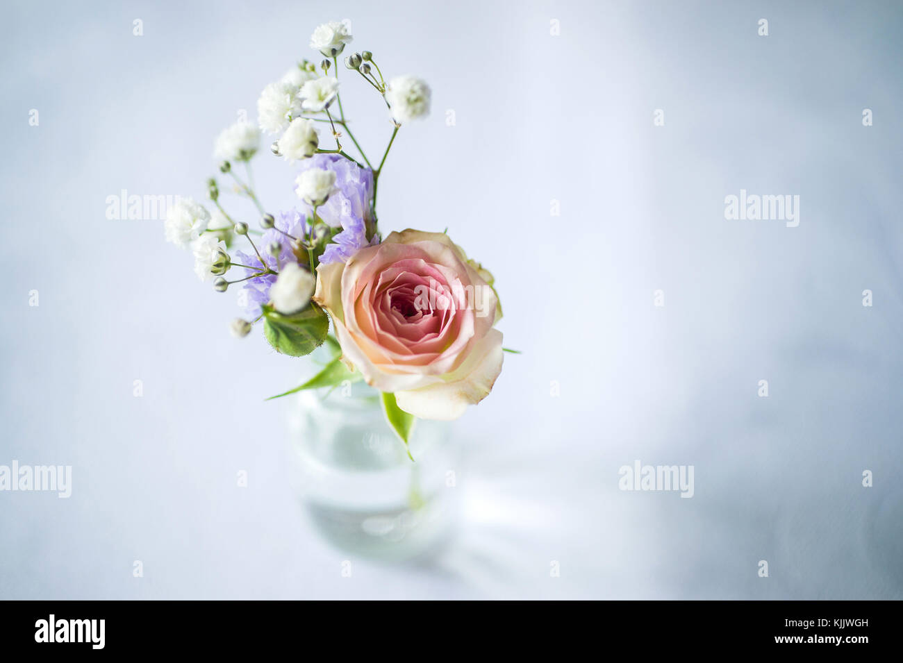 Flowers in a vase. France. - Stock Image