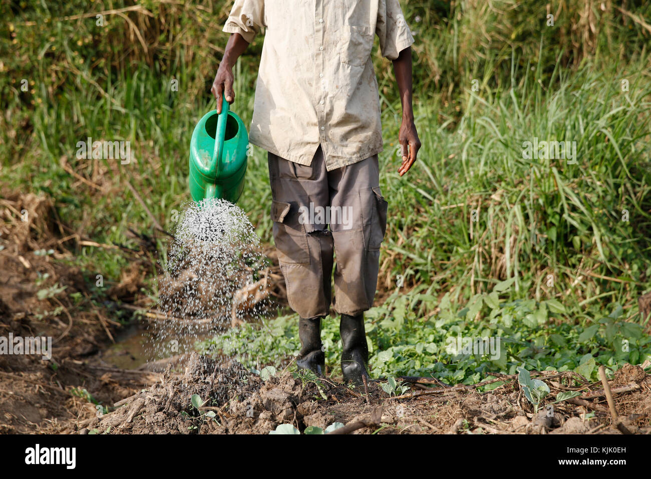 Farmer Apollo Byarunga received 2 loans from ENCOT microfinance. Uganda - Stock Image