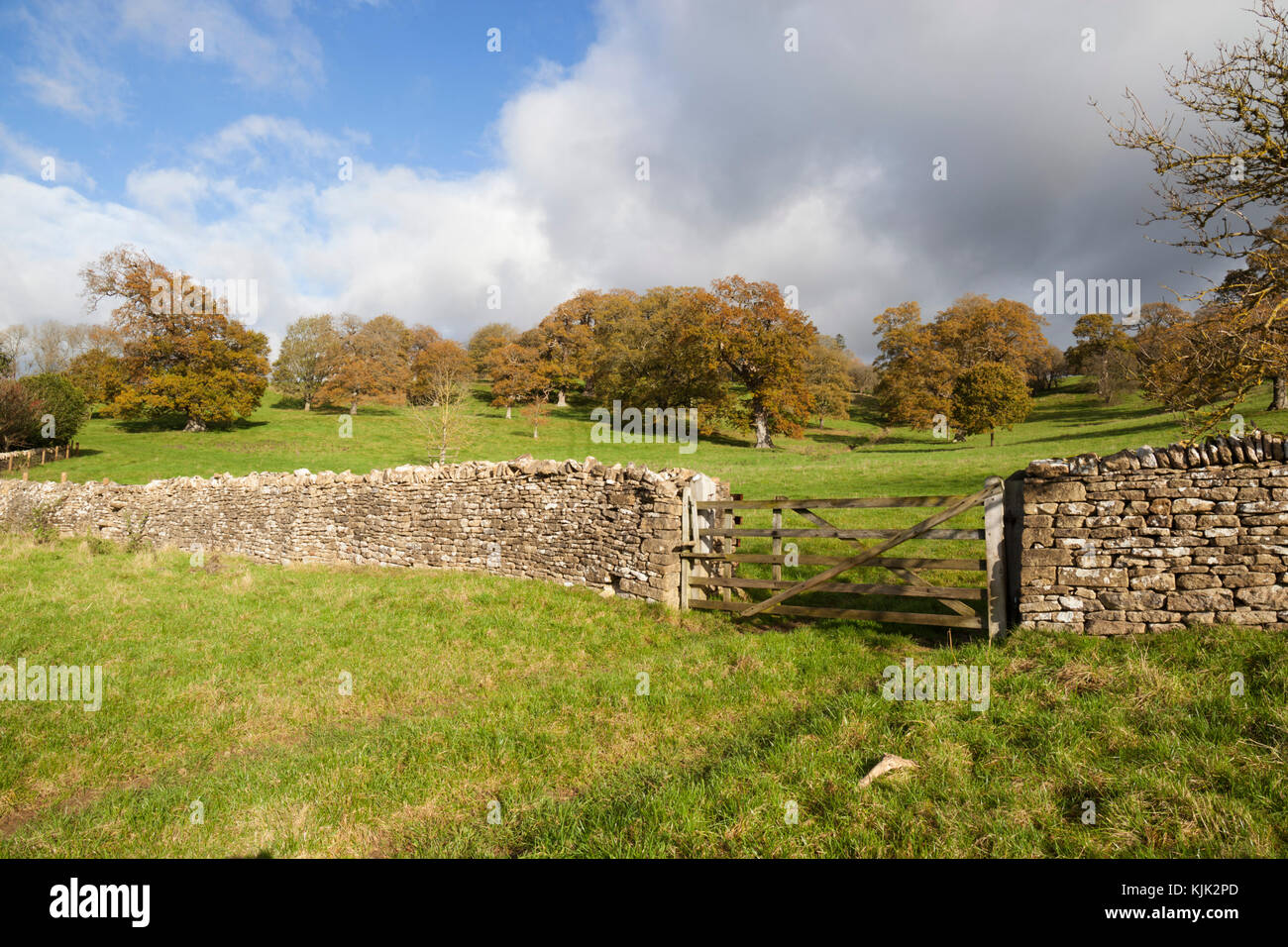Cotswold dry stone wall and wooden five bar gate with grass fields and autumn trees behind, Stowell, Cotswolds, - Stock Image