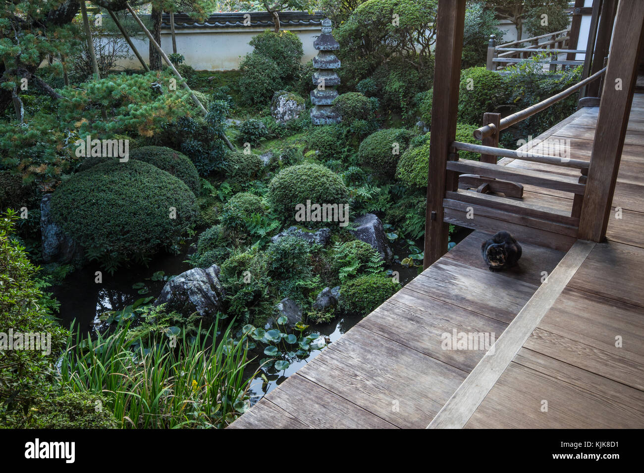 Chogakuji Temple Tsubo Niwa Garden - Chogakuji Temple is said to have been founded around 824 by Kobo Daishi,.  - Stock Image