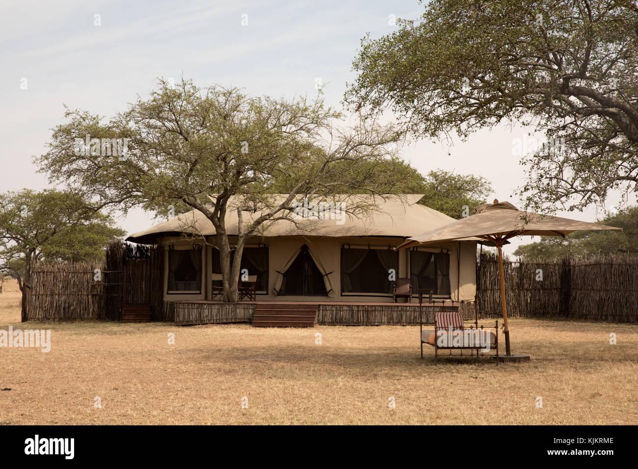 Serengeti National Park. Singita Sabora Tented Camp. Tanzania. - Stock Image