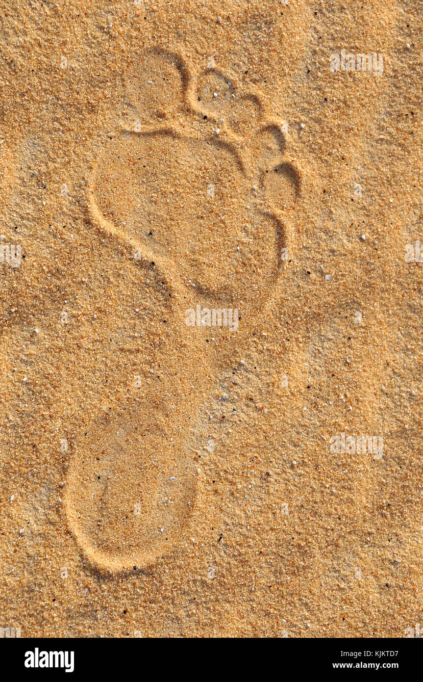 Footprint in the desert, Assiout province. Egypt. - Stock Image