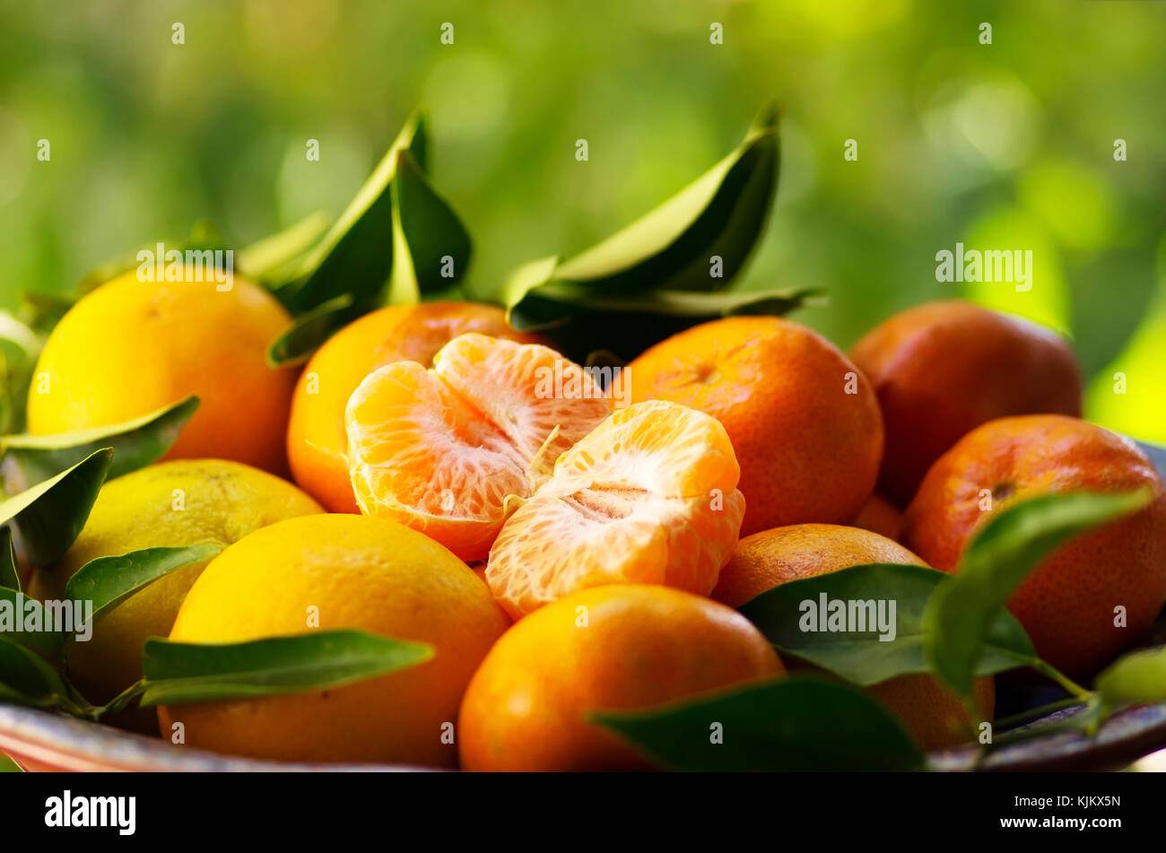 fresh tangerines on a green background Stock Photo