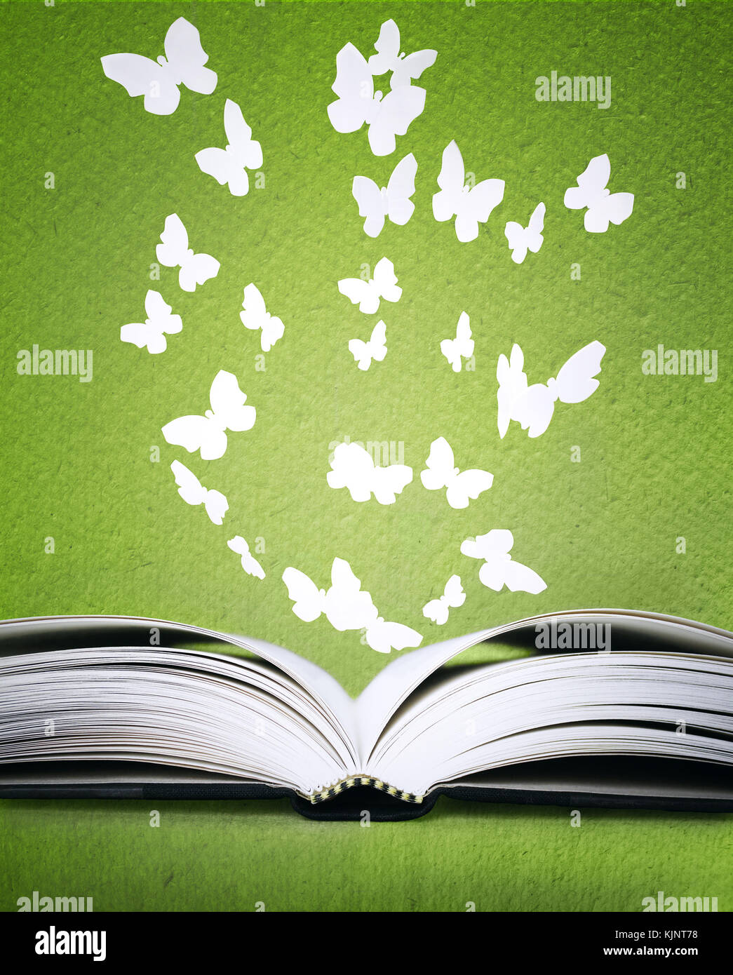 An opened book with stylized butterflies above on a green background texture - Stock Image