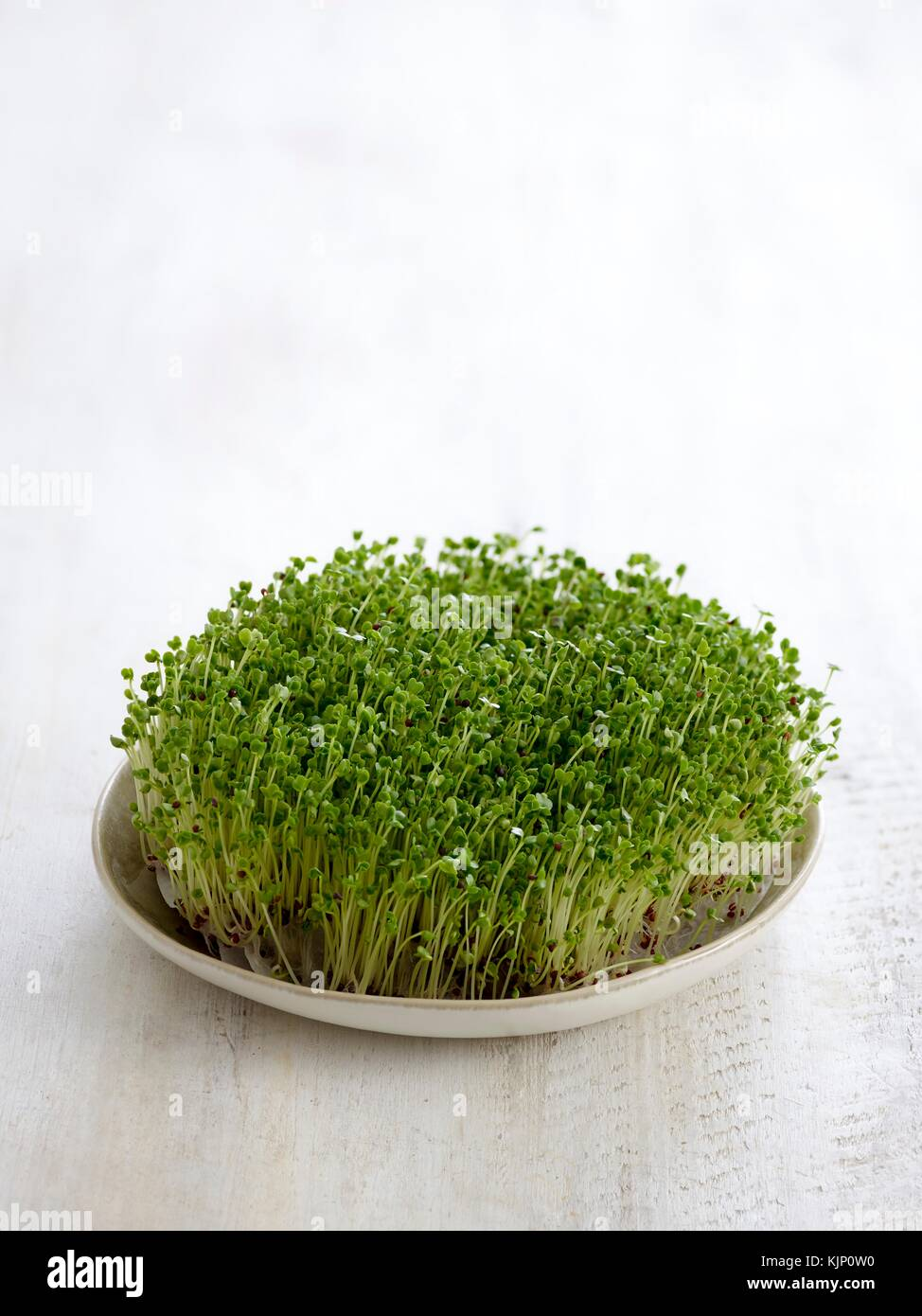 Sprouting broccoli in a dish. - Stock Image