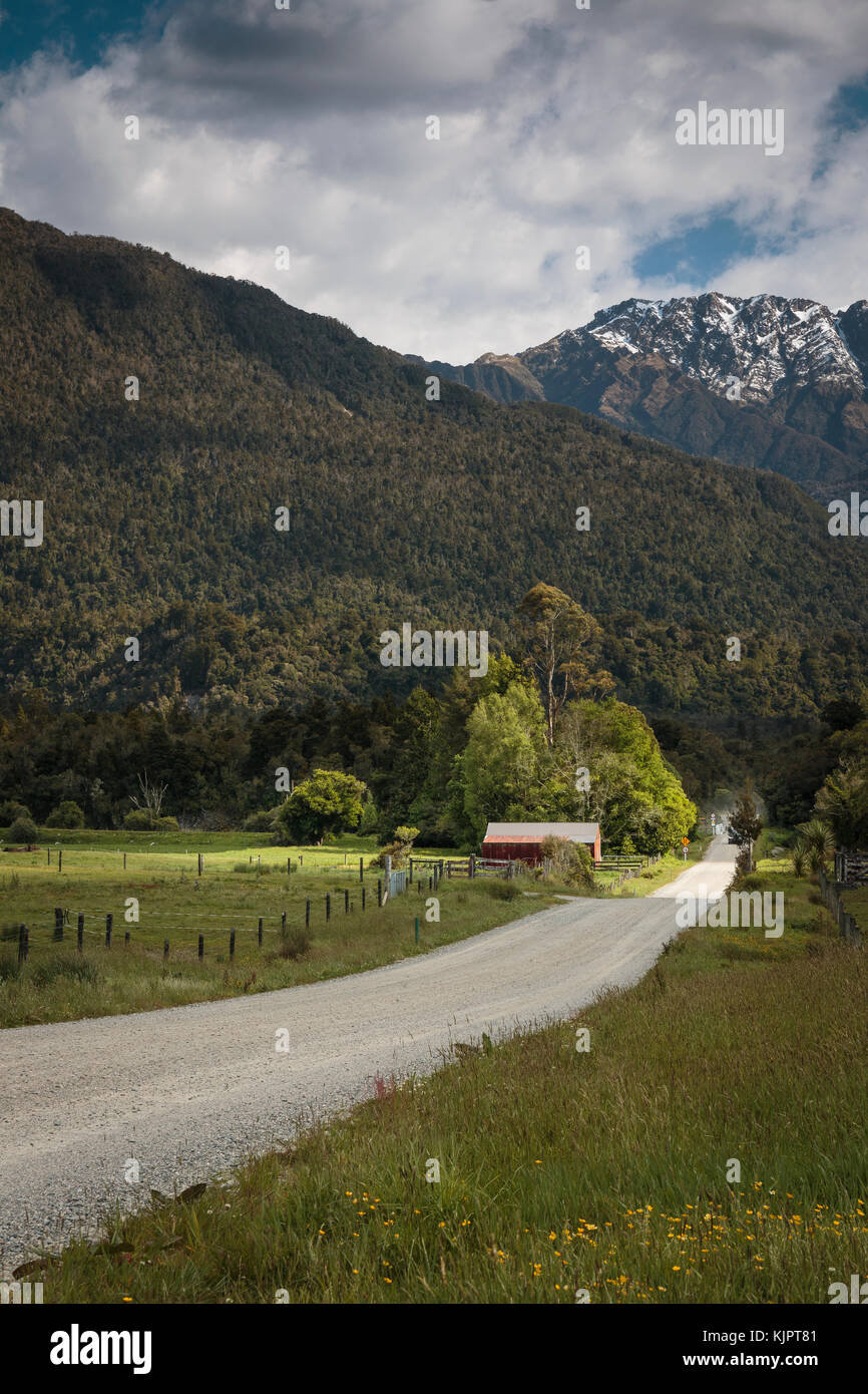 A shed near Kokotahi, Westland, New Zealand - Stock Image