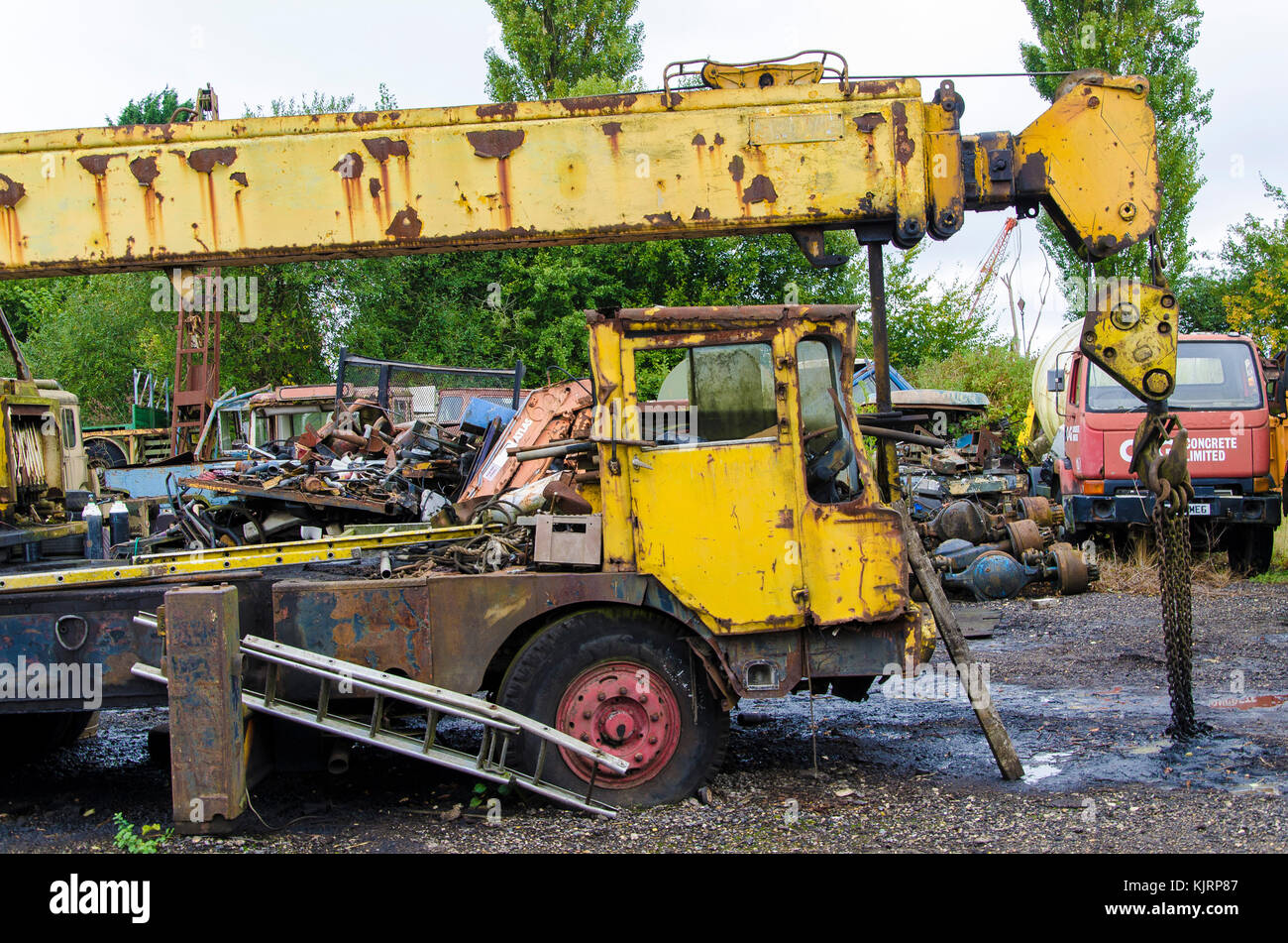 A scrap yard that specifically holds broken down vehicles for scrap and vehicle parts completely over grown and - Stock Image