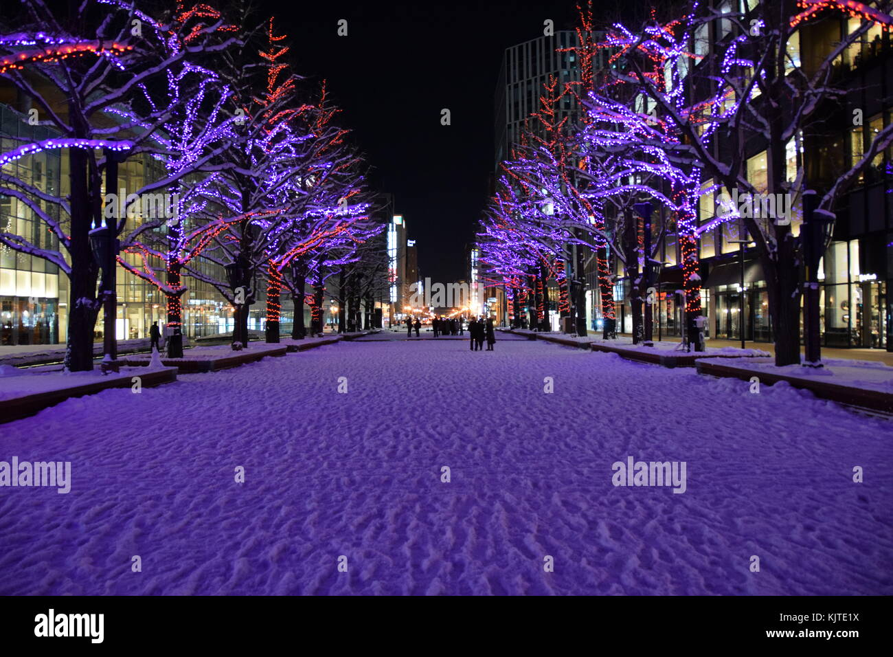 Winter In Sapporo Japan Night Picture With Snow And Trees Christmas Lighting People The Background