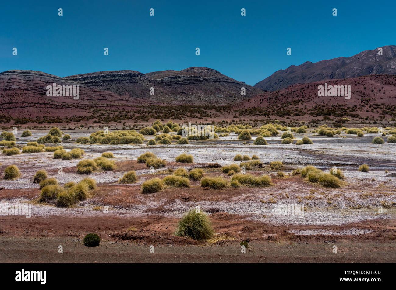 Photo taken in August 2017 in Uyuni Bolivia, South America: Atacama Desert in Uyuni Bolivia - Stock Image