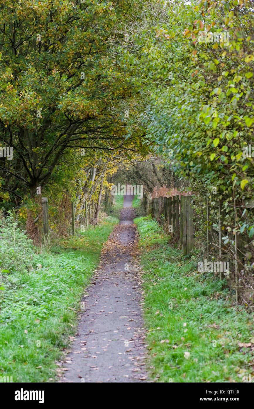 Path through the English countryside in Autumn. Stock Photo