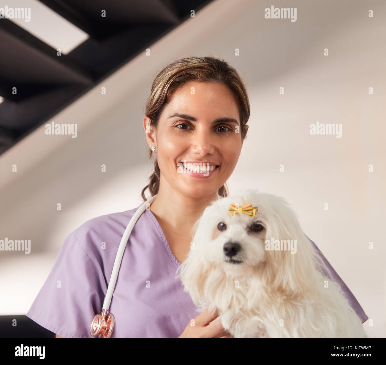 Confident young hispanic woman at work as veterinary, happy vet playing with dog during house call. Animal doctor Stock Photo