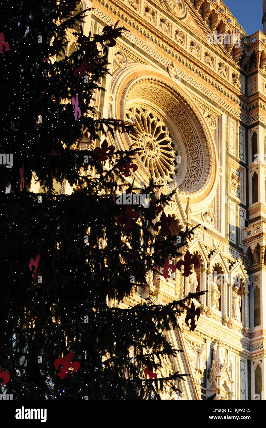 Christmas In Florence Italy.Christmas In Florence Christmas Tree In Piazza Del Duomo
