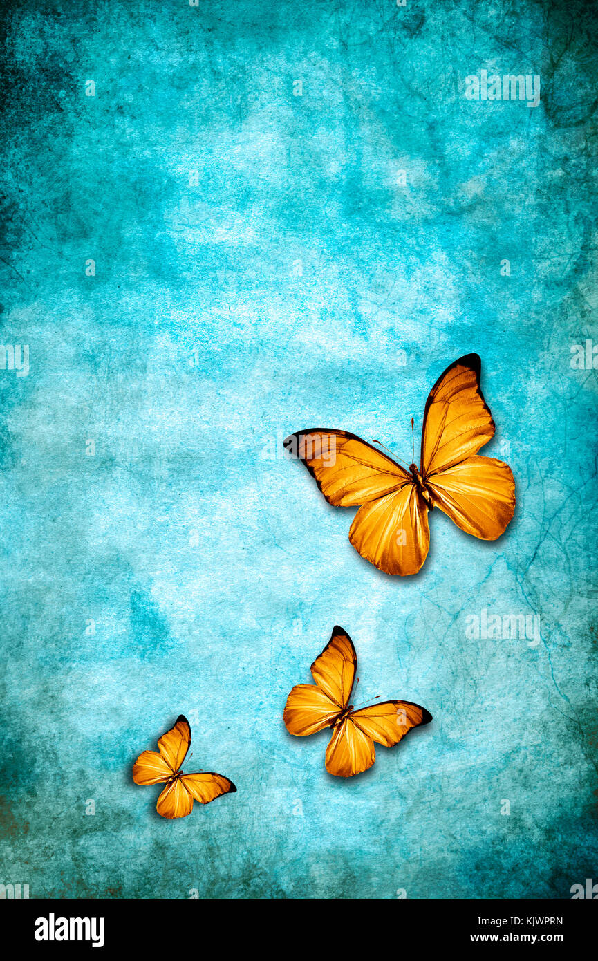 yellow butterflies flying over a blue grunge background with copy space - Stock Image