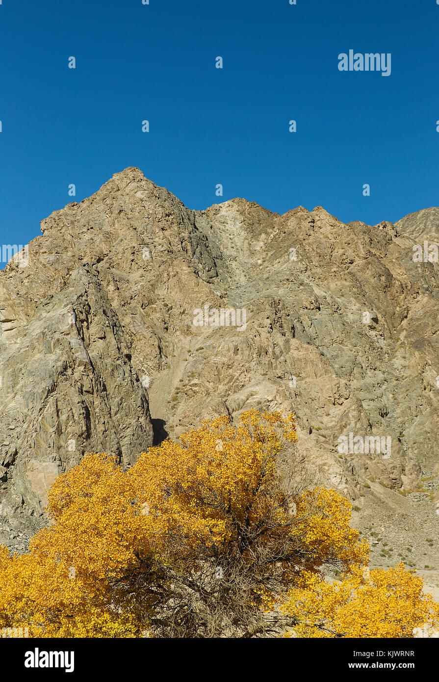 Yulin River Valley, Gansu Province-China - Stock Image