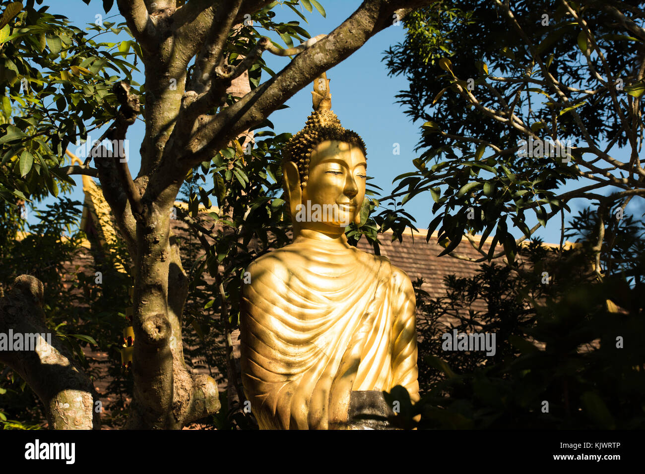 Golden buddha in the shade of Wat Choumkhong in Luang Prabang, Laos - Stock Image