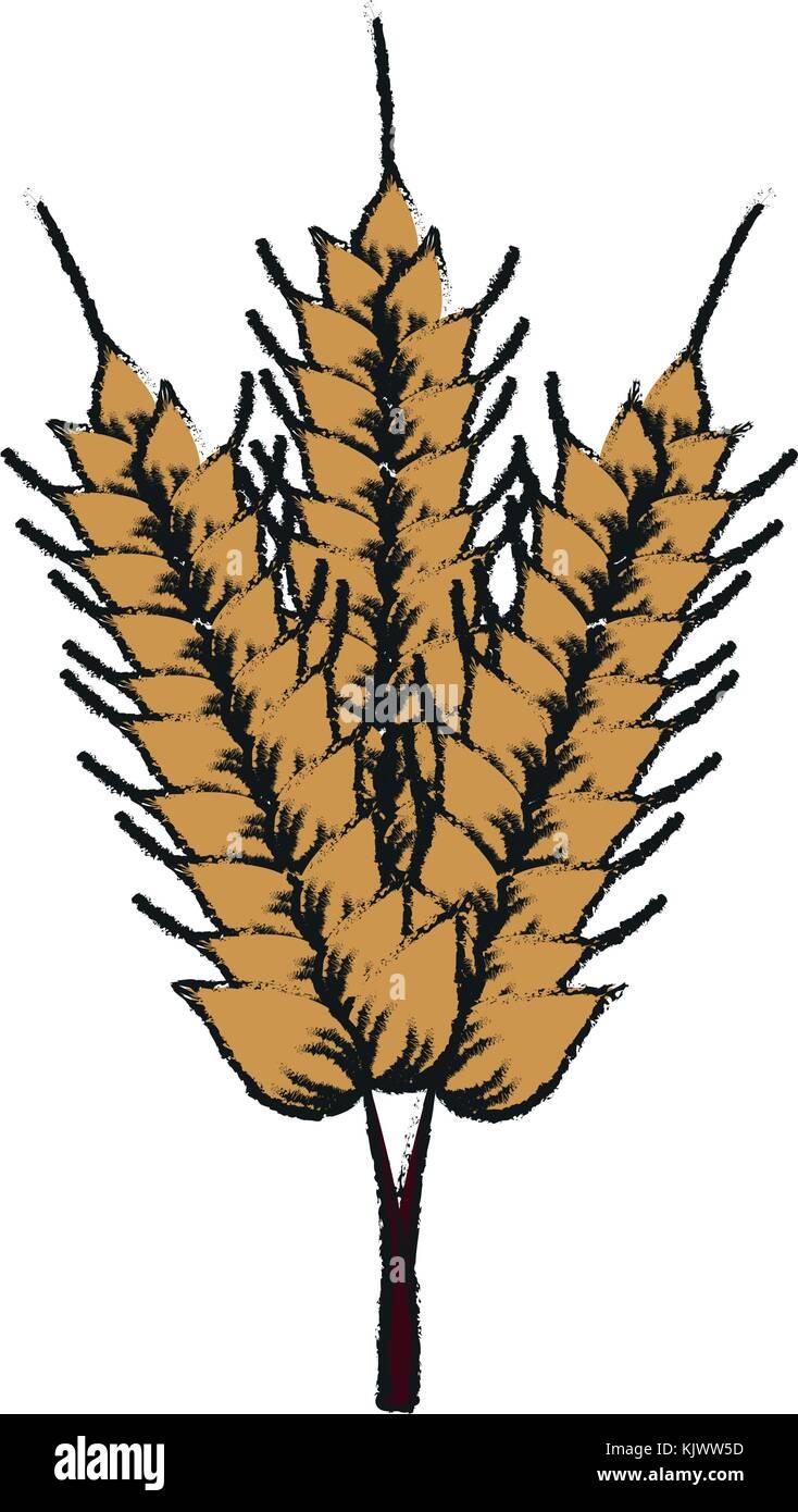 Harvest of wheat symbol - Stock Vector