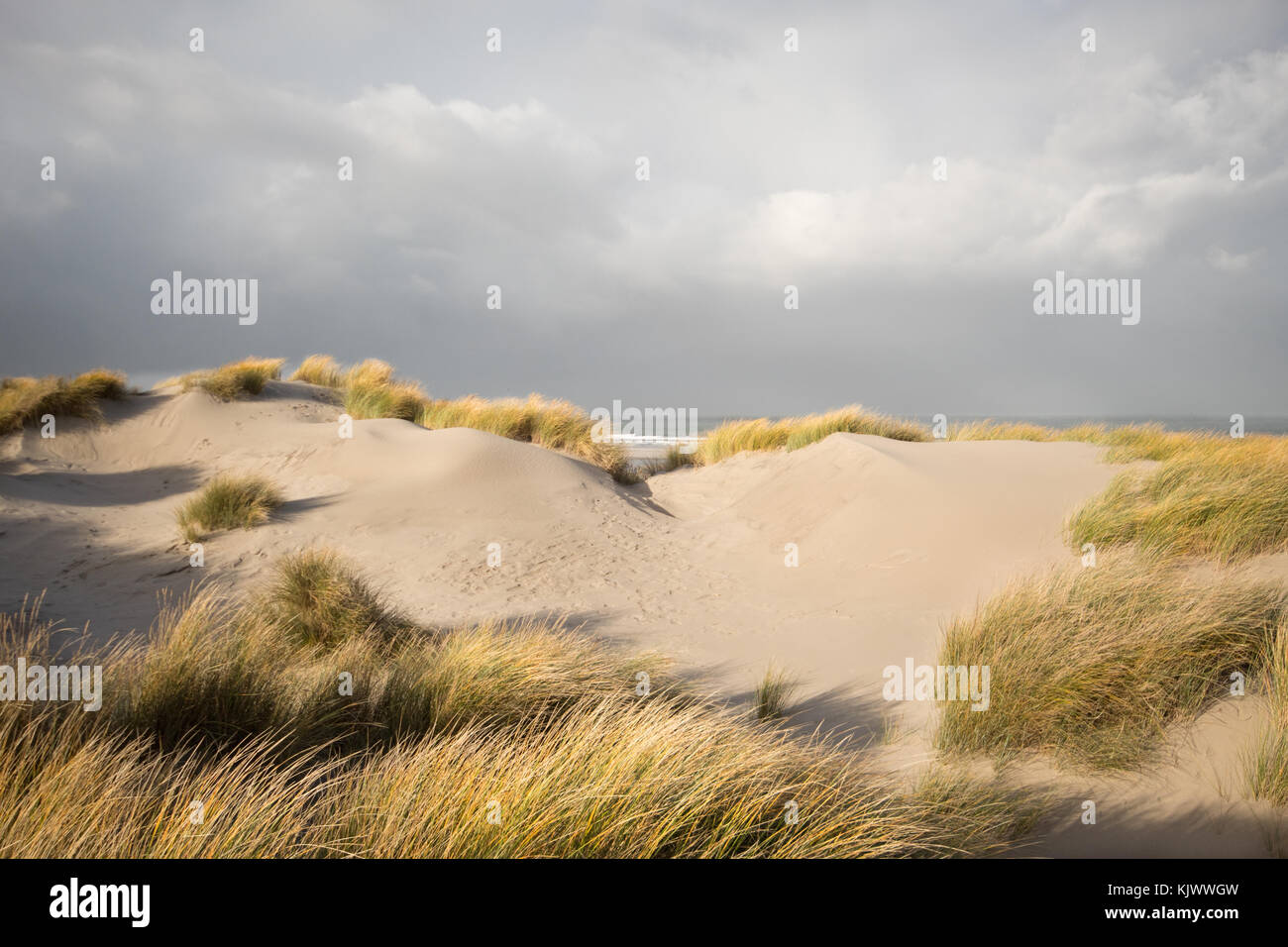 Dark clouds above the sea, the dunes in the foreground are still in the sun. - Stock Image