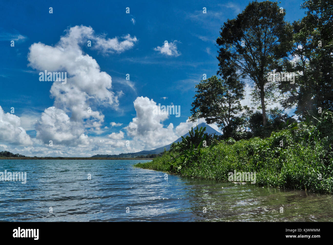 Lake Arenal is the largest lake in Costa Rica with a size of 85 square-kilometers. The Arenal Volcano  is one of - Stock Image