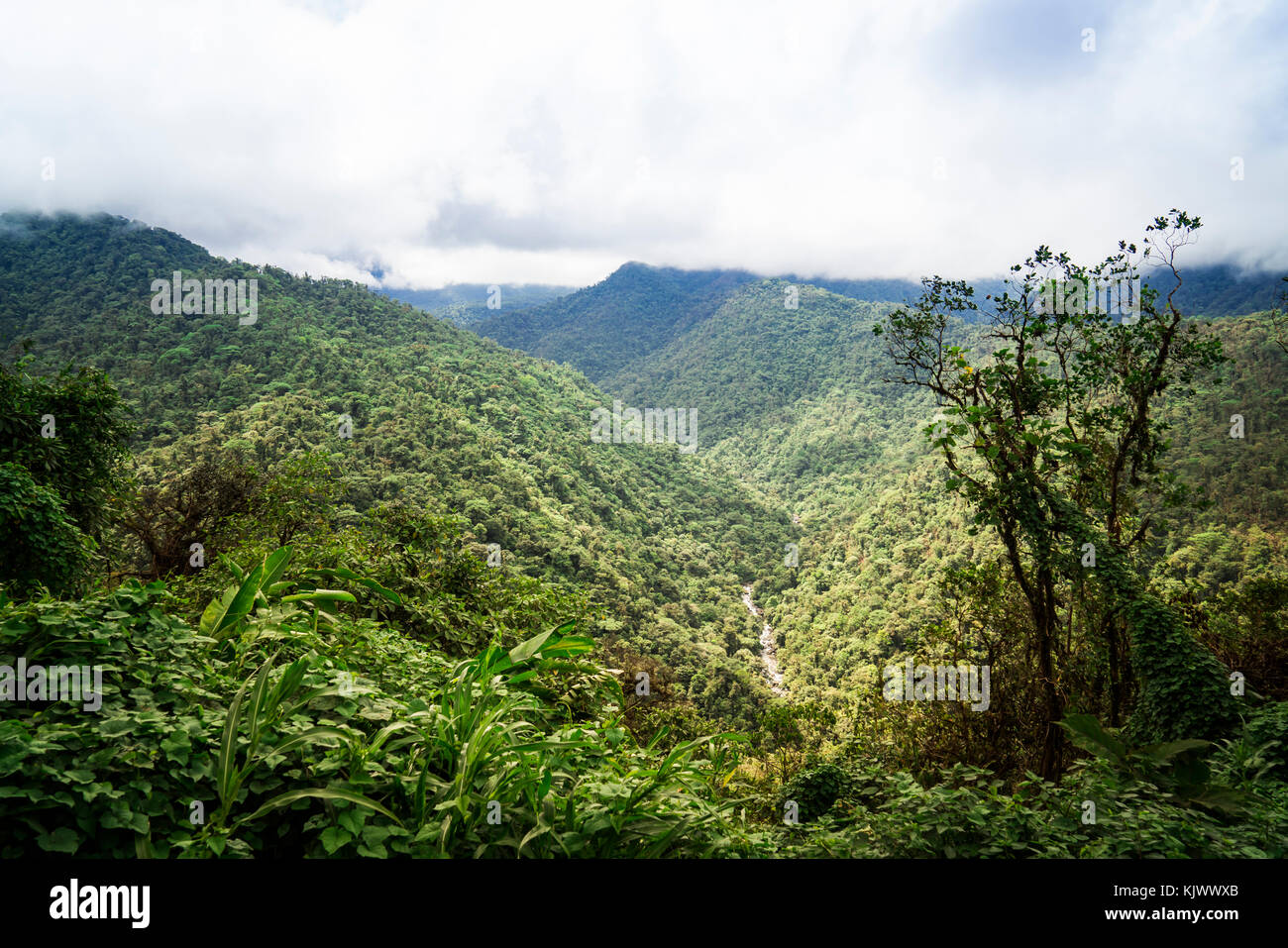 Braulio Carrillo National Park has very high mountains and deep valleys. The tropical rain forest covers everything. - Stock Image