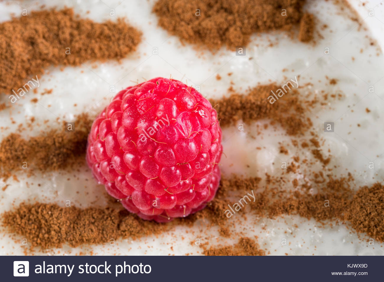 Rice pudding dessert or sweet food. The dish is made from rice mixed with milk and other ingredients such as cinnamon - Stock Image