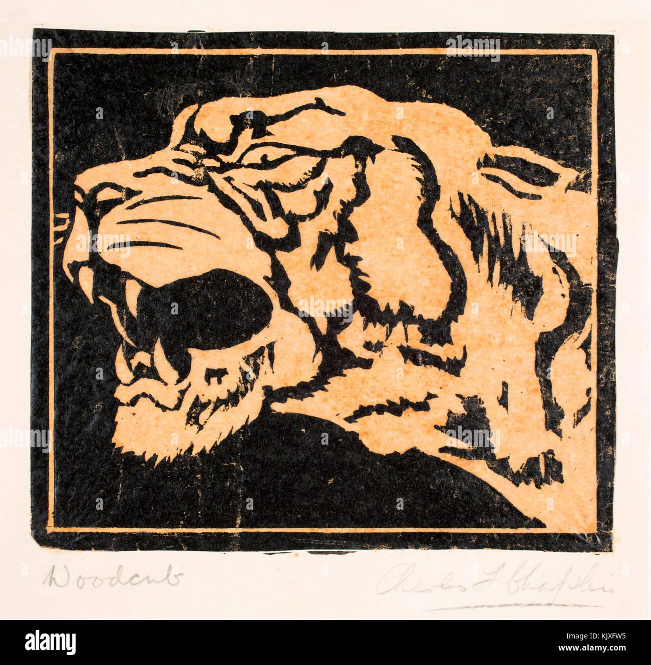 Tiger, 1920s woodcut print by artist and printmaker Charles F Chaplin Stock Photo
