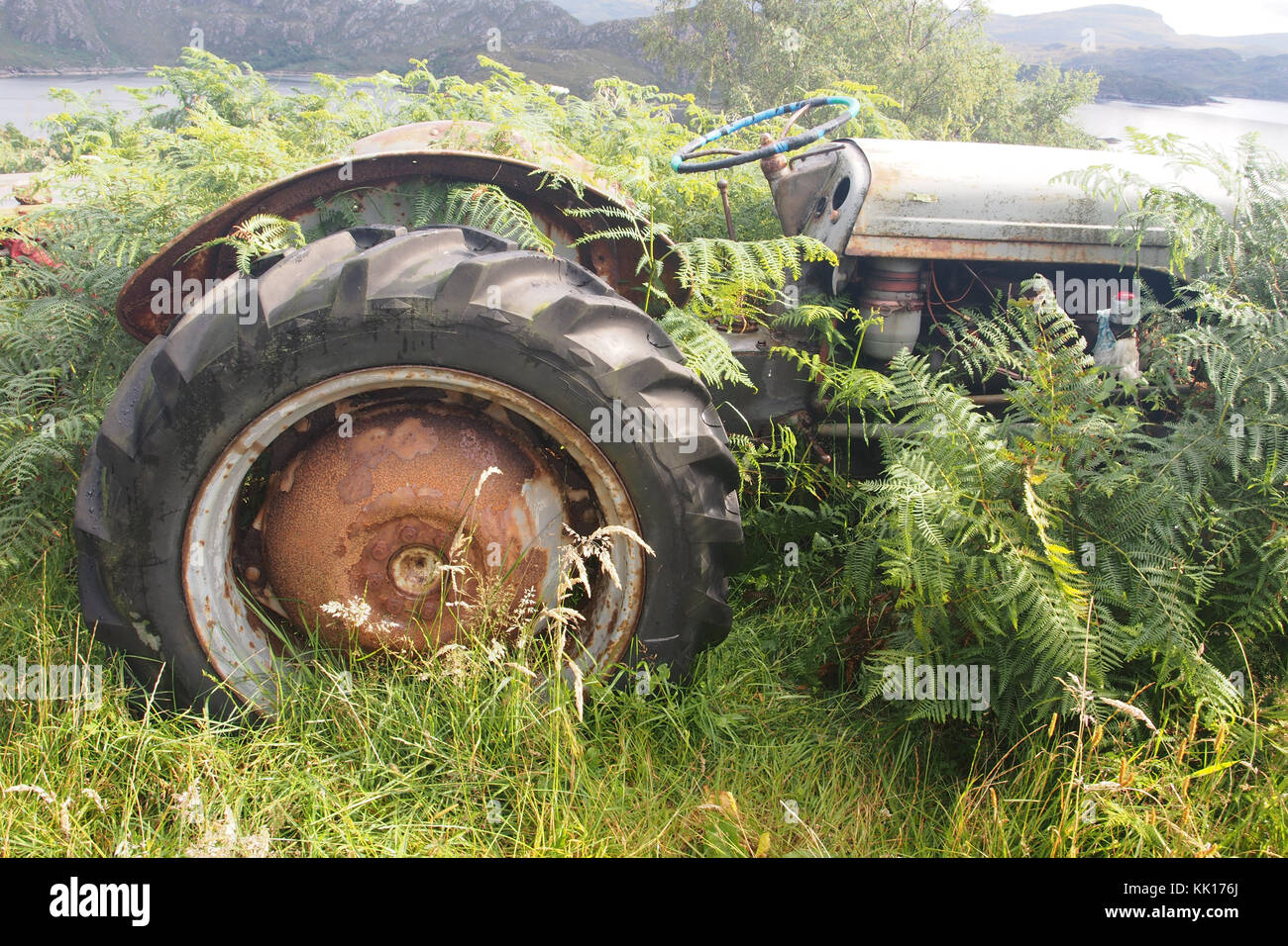 An old tractor left by the side of the road engulfed in bracken - Stock Image