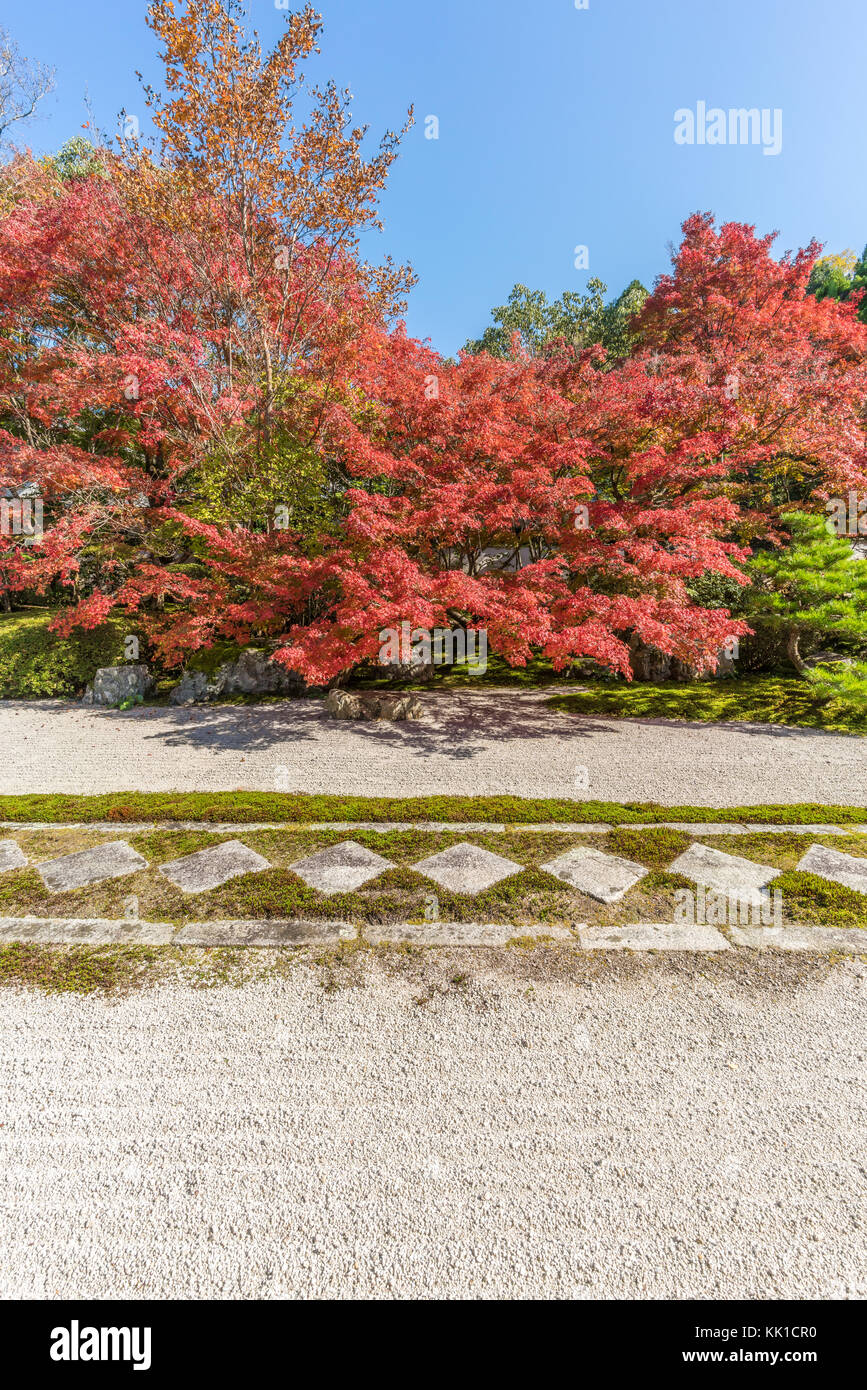 Autumn leaves Fall foliage at Tenjuan Temple raked gravel Rock Garden. Subtemple of Nanzenji. Located in Higashiyama, - Stock Image