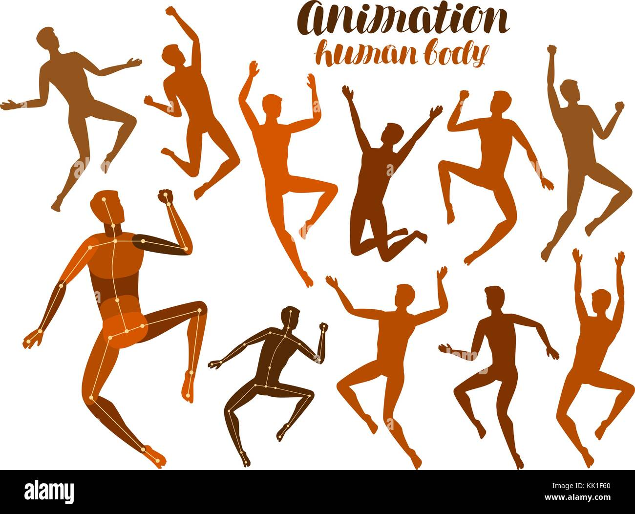 Animation of human body. Anatomy, people in motion concept. Silhouettes, vector illustration - Stock Image