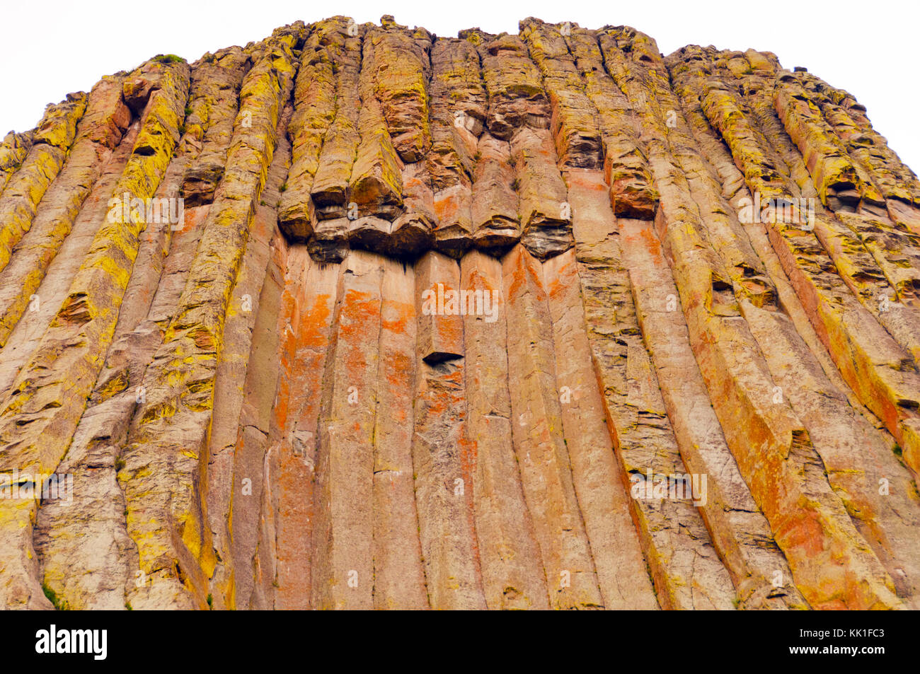 Basaltic Columns in Devils Tower in Wyoming - Stock Image