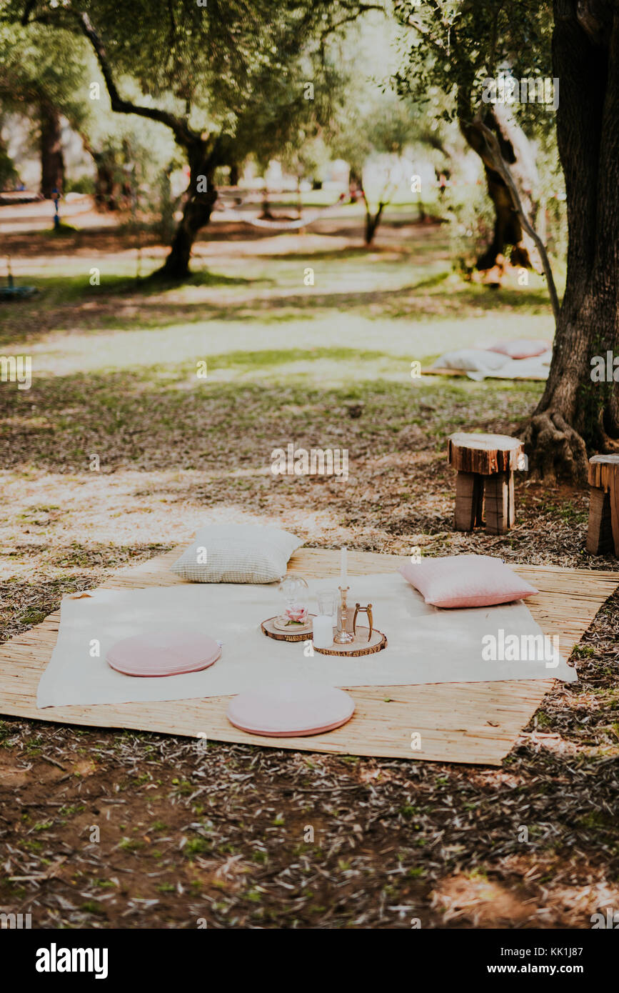 Perfect spot for picnic in olive groove - Stock Image