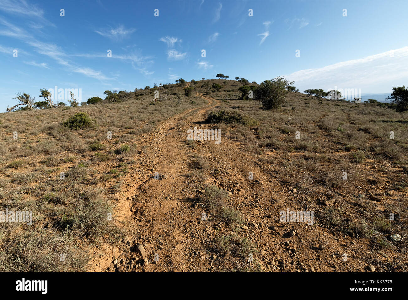 Landscape of Addo Elephant National Park in August, South Africa Stock Photo
