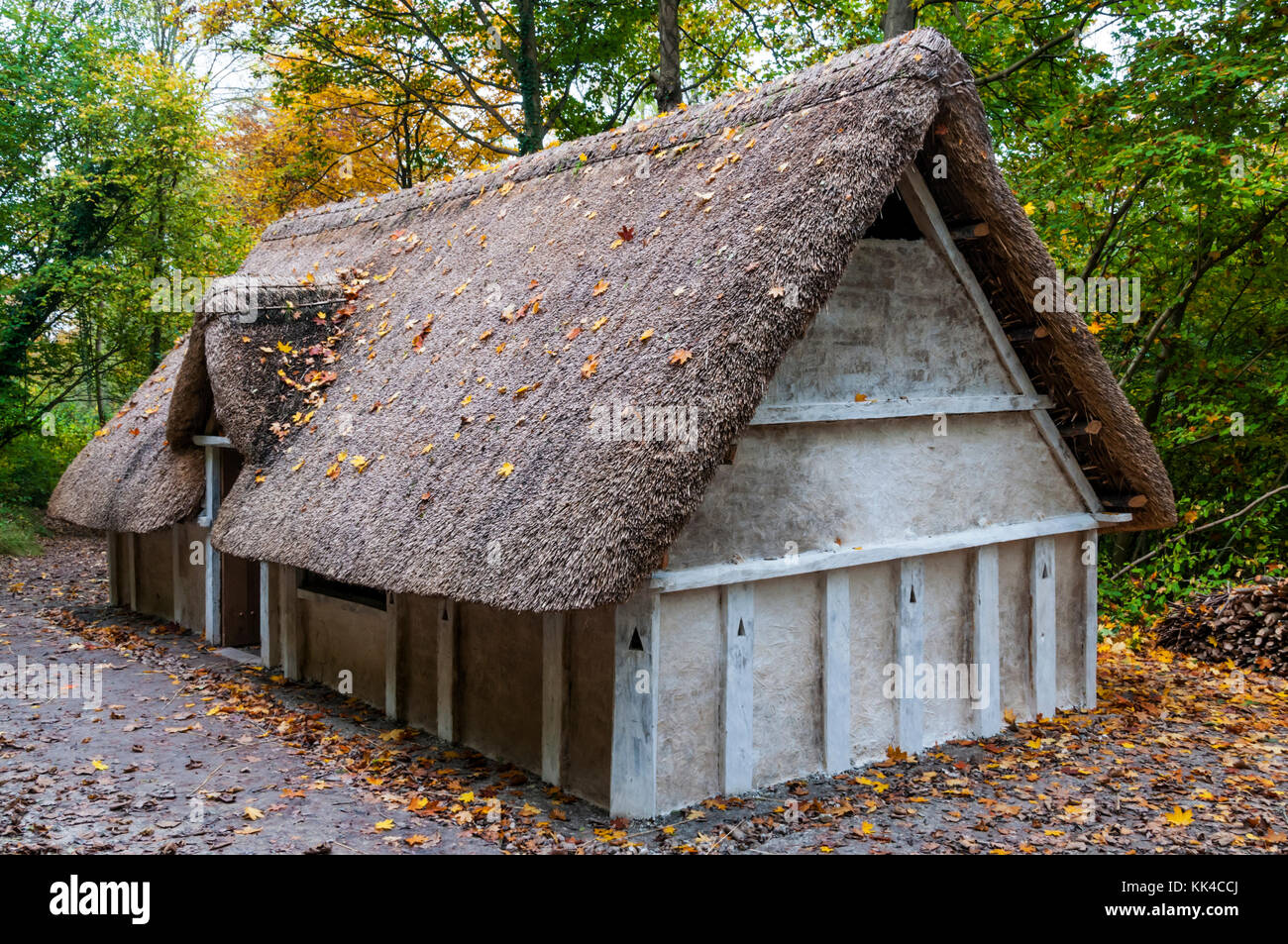 Reconstruction of an Anglo Saxon hall house at the Weald and Downland Open Air Museum, Singleton, West Sussex. - Stock Image